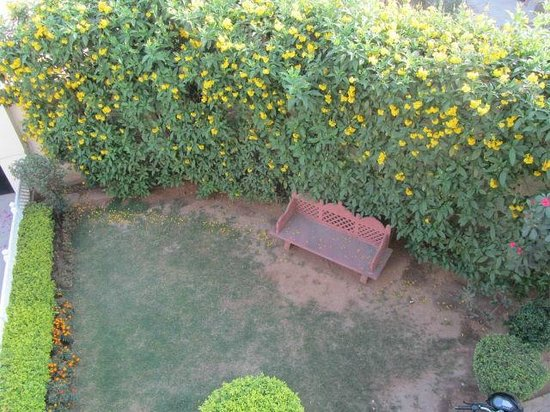 Jai Vilas, Jaipur : the garden
