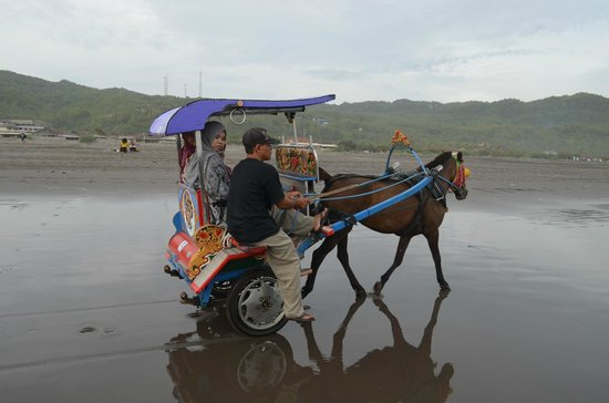 Parangtritis Beach: driver sits at the side