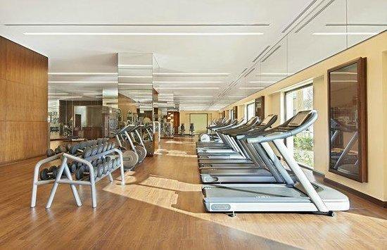 Fairmont The Palm, Dubai: Health Club