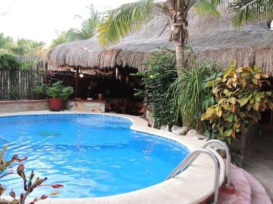 Cocos Cabanas: бассейн и ресторан