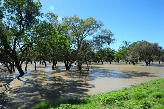 The Barwon Inn: There was a lot of water around from recent rain