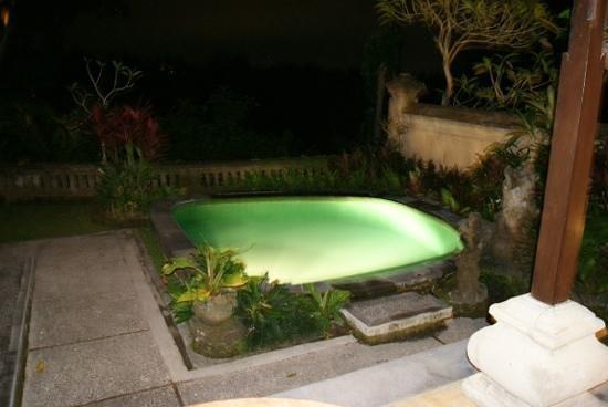 Pita Maha Resort and Spa: plunge pool