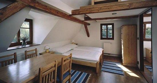 Loucna, República Checa: Room