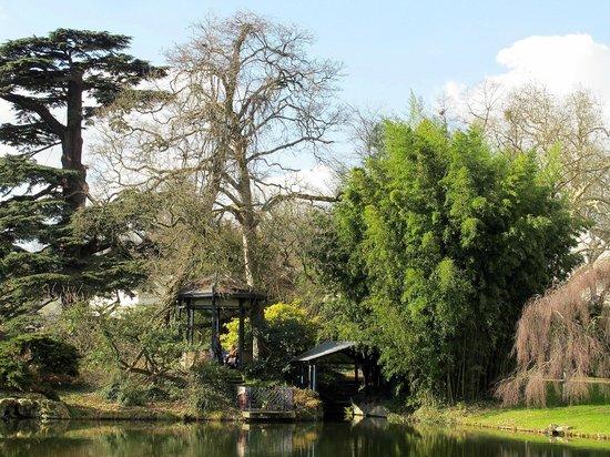Arboretum de la Vallee-aux-Loups