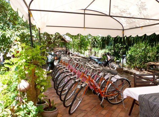 Villa Ban Lakkham: Bicycles for guests
