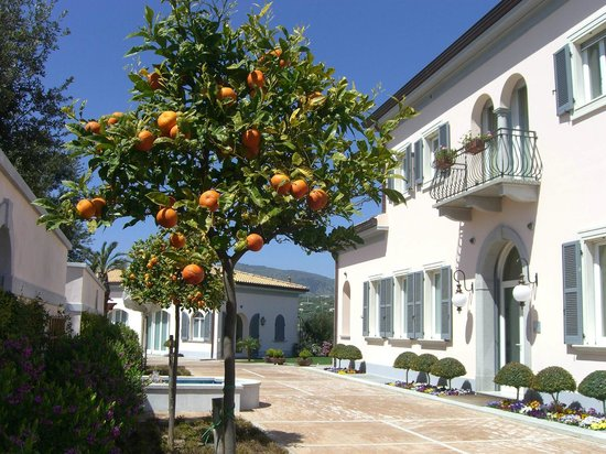 Villa Ersilia: Ingresso