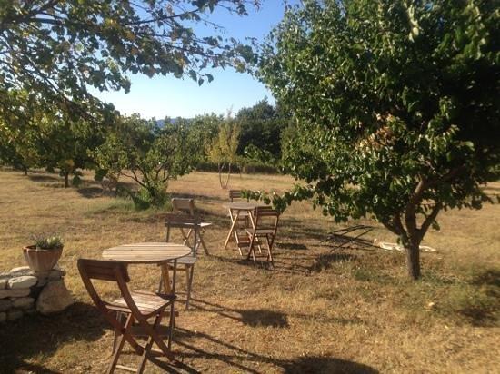 Le Mas Des Ozieres: il giardino