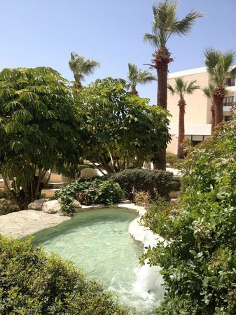 Avanti Hotel: Beautiful landscaping inside the hotel grounds