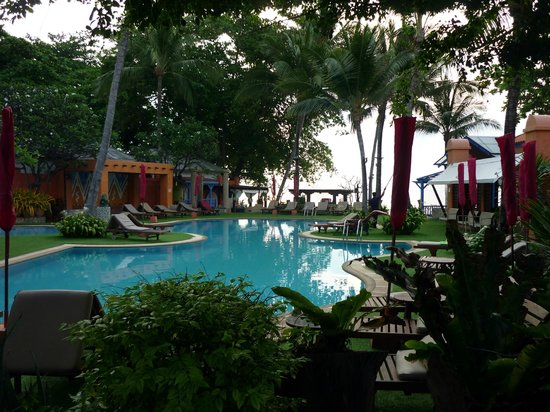 Baan Samui Resort : The pool area