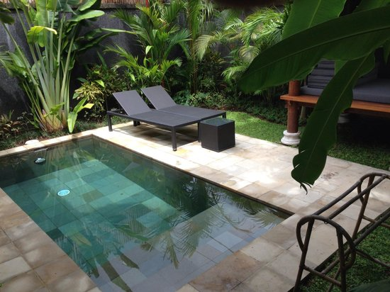 Mango Tree Villas: Plunge pool