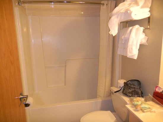 Meadowlands Plaza Hotel-Secaucus: Reasonable bathroom