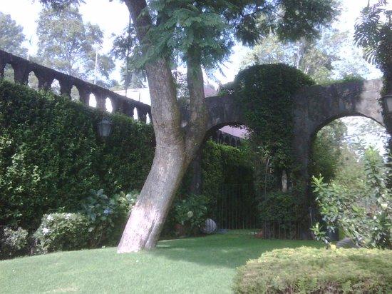 Jardines del pedregal de san angel mexico city top tips for 777 jardines del pedregal