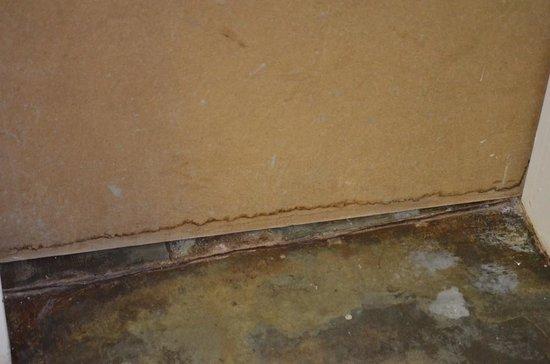 Villa Langa B&B : walls humidities