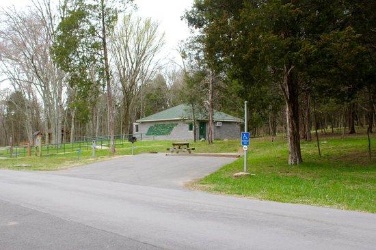 Bledsoe Creek State Park: Camp site