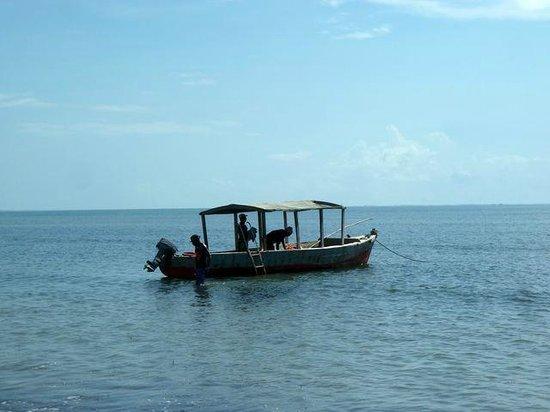 Beach Crab Resort: oceano