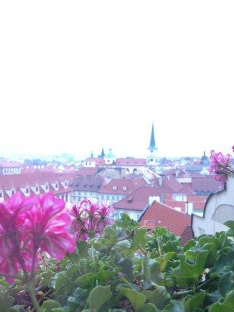 جولدن وول (يو زليت ستودن): 部屋から見えるプラハの町並み