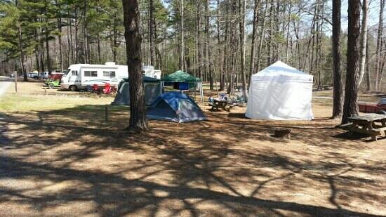 Zooland Family Campground: our campsite