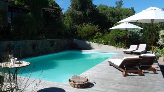 Kanonkop Guest House: Pool des Guesthaouse