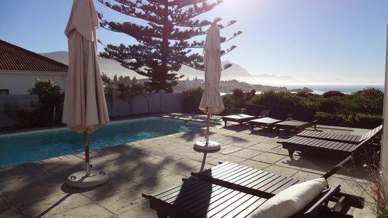 Ocean Eleven Guesthouse : Pool am Morgen