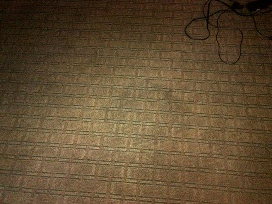Quality Inn Tanglewood: stains ALL OVER  floor