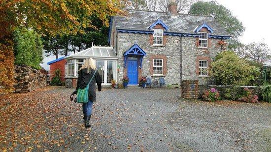 Druid Cottage: Cottage
