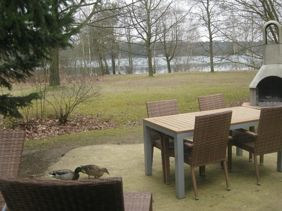 Center Parcs De Kempervennen: View from lounge area