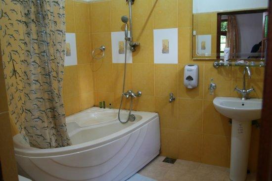 Eeshani Guest Inn : Bathroom