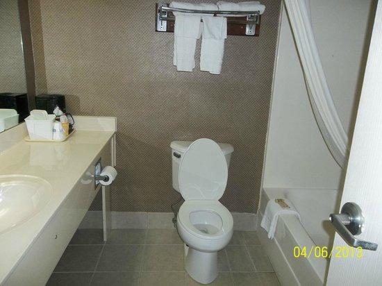 Travelodge Suites Savannah Pooler: bathroom