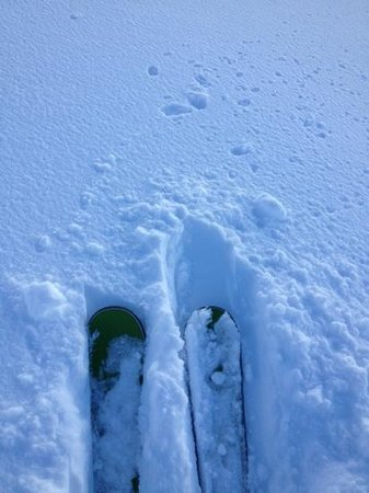 Stoked Swiss Ski and Snowboard School: fresh snow- skiing with stoked