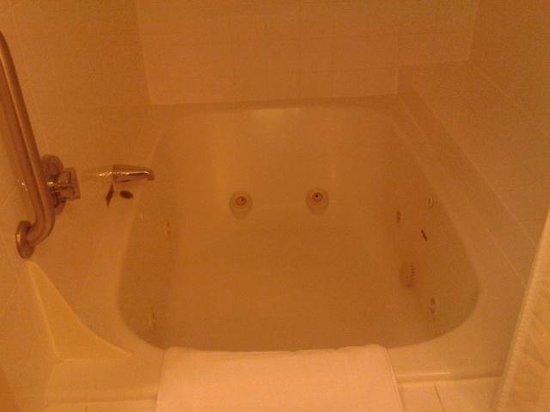 Hilton Garden Inn Plymouth : Bathroom