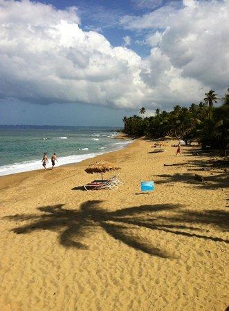 Tamboo Seaside Grill Sandy Beach Rincon Puerto Rico