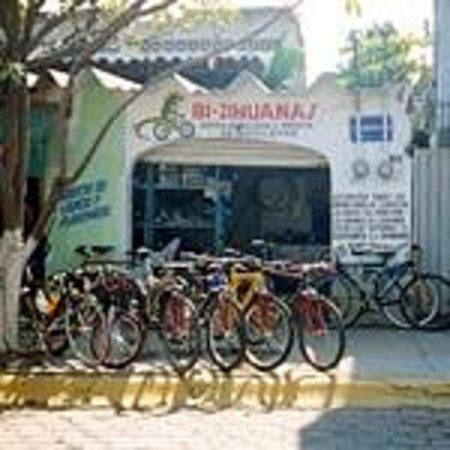 Bi-Zihuanas Mountain Bike Tours