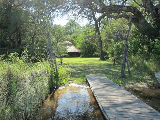 Camp Moremi: The boma seen from the jetty