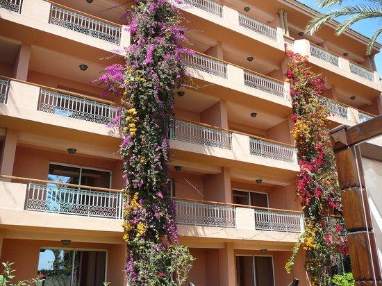 Vue c t piscine bougainvilliers picture of sofitel - Piscine sofitel marrakech ...
