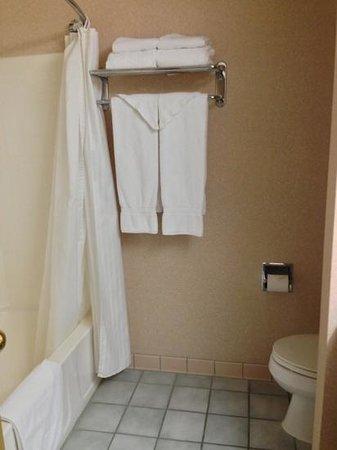 Abbey Inn & Suites: Bathroom in 2-queen-bedroom