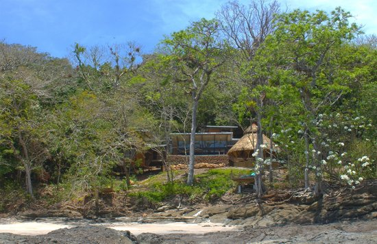 The Resort at Isla Palenque: View of the Estate Rooms from Playa Primera