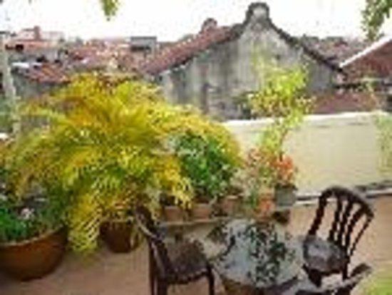 Roof Top Guest House Melaka: Roof Top Garden