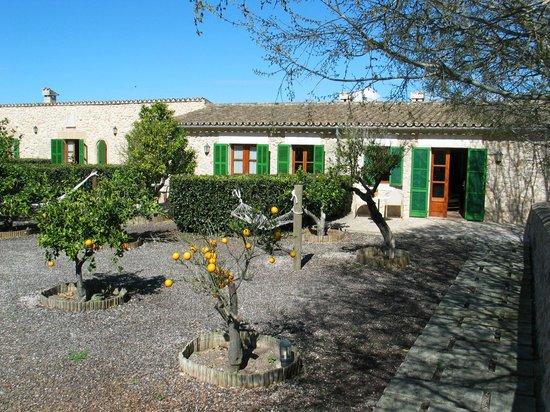 Agroturismo sa Rota d'en Palerm: voor tuin