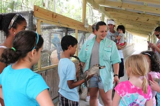 Gatorama: kids had lots of questions