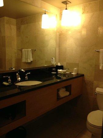 The Westin Detroit Metropolitan Airport: Lovely Bathroom