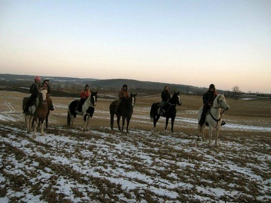 Painted Bar Stables: Winter ride through some of the fields