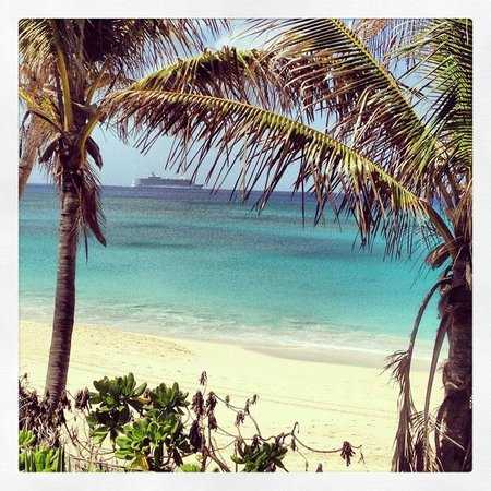 Sivananda Ashram Yoga Retreat : The Beach at Sivananda