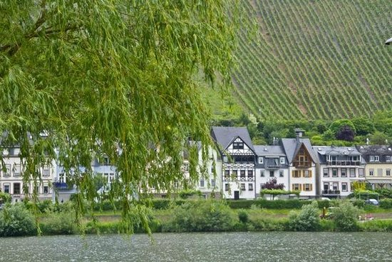 Pension Winzerhaus: Around town