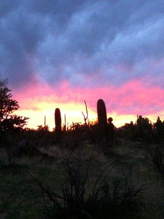 Hacienda Linda: Sunset