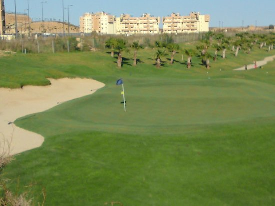 United Golf Apartments: golf course