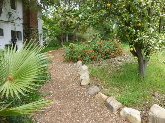 Pepper Tree Retreat: Grounds