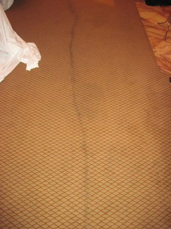Hotel St. Marie: Filthy carpeting