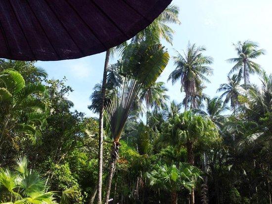Baan Mai Beachfront Lone Island: Zwembad