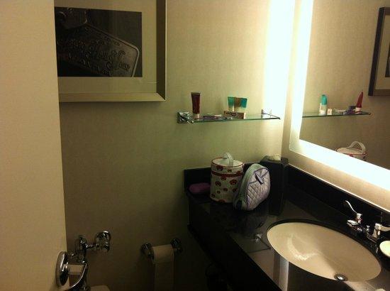 Hyatt Regency Atlanta: banheiro