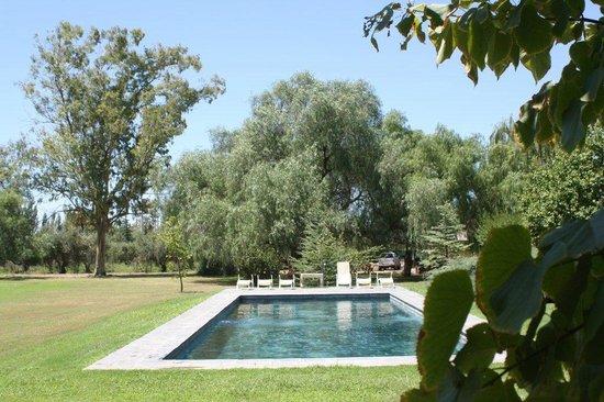 Villa Victoria Lodge : pool and garden 2